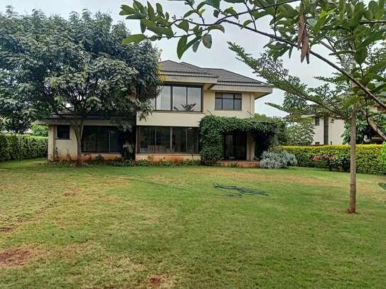 4 bedroom house for rent in Garden Estate image 19