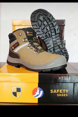 Safety Shoe No. HTS01 (Box Of 10)