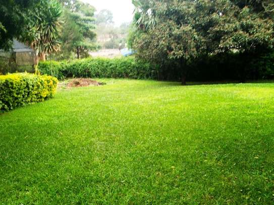 Lavington - Land, Residential Land