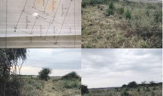 1 acre land for sale image 3