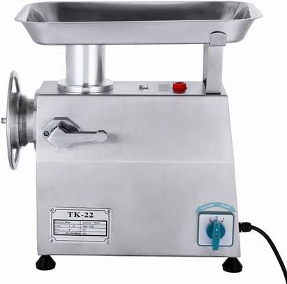 220V Meat Grinder for Home Commercial Use  Plug image 1