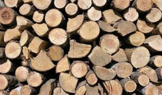 Firewood For Sale - Delivered to You Nairobi image 9
