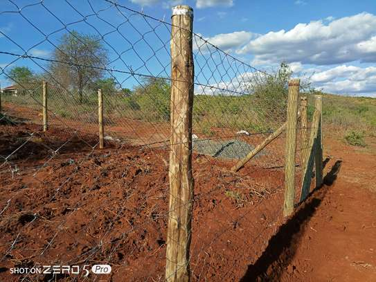 Treated poles and Fencing services image 1
