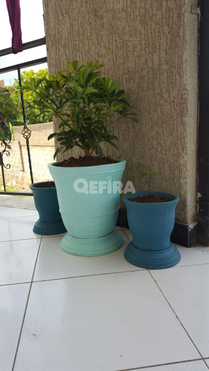 Concrete Pot Planter In Addis Ababa Qefira