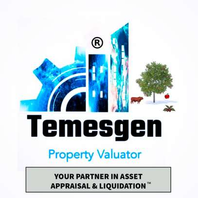 TEMESGEN PROPERTY VALUATOR