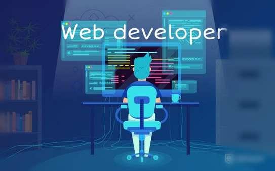 Website Developer image 1