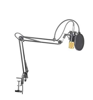 Professional Microphone image 1