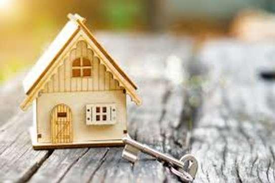 Biruk Real Estate Broker