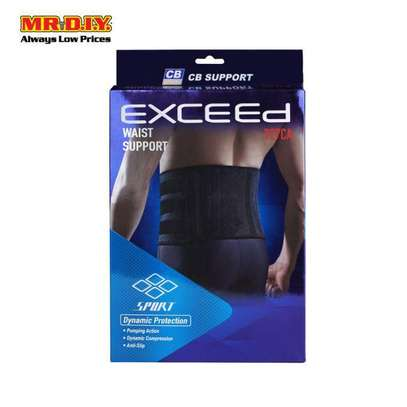 Exceed Waist Support image 1