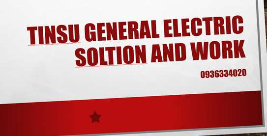 TINSU General Electronics Solution and Work