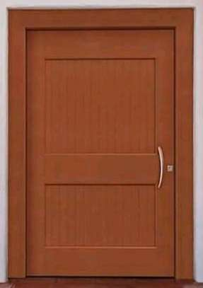 Primary Door Design