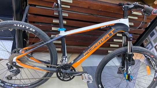 Brand New Format Mountain Bike