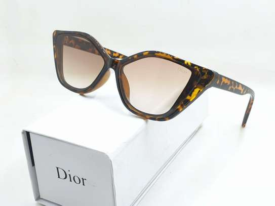 Dior Branded Sunglasses