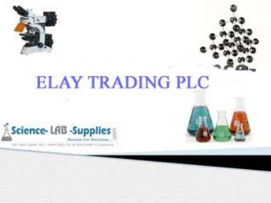 ELAY TRADING PLC