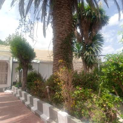 Furnished House for rent in bole homes compound image 10