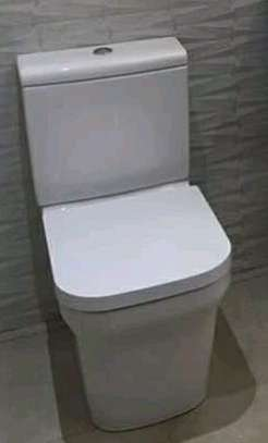 Rough Toilet Seat