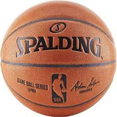 Spalding NBA Official Indoor/Outdoor Basketball