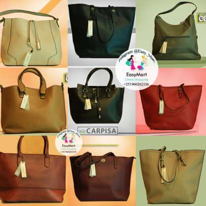 Assorted Colors Carpisa Handbags
