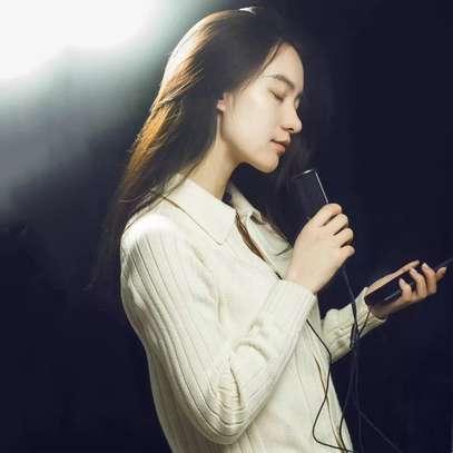 Microphone HD image 4