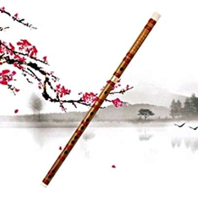New Universal Chinese Traditional Musical Instrument image 1