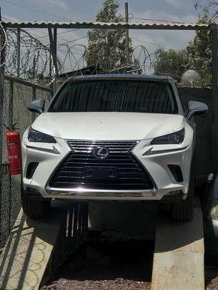 2019 Model-Lexus image 1