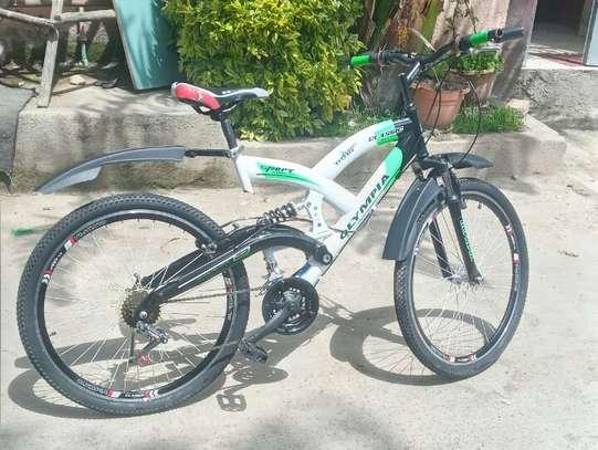 Bicycle Olympia Bahrico