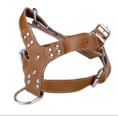 Adjustable leather Dog Chest Walking Harness