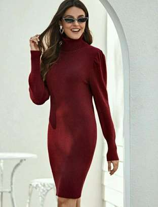 Maroon Color Long Sleeved Sheath Dress
