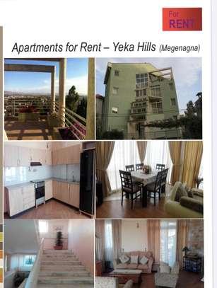 Apartments For Rent (Yeka Hills Megenagna)