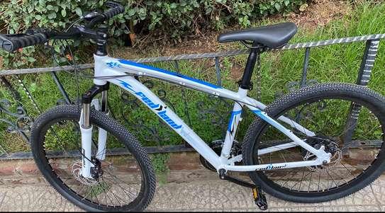 Brand New Red Land mountain bike