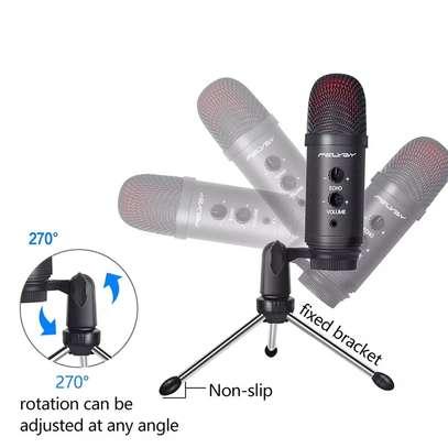 micraphone image 1