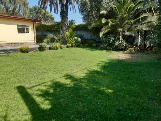 1000 Sqm House For Rent image 4