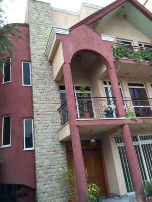 Fully Furnished House Fo Rent