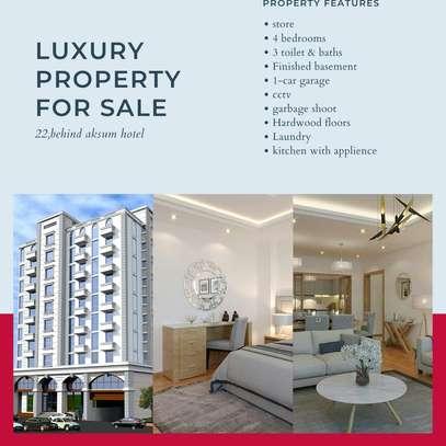 230 Sqm Roha Luxury Apartment For Sale image 1