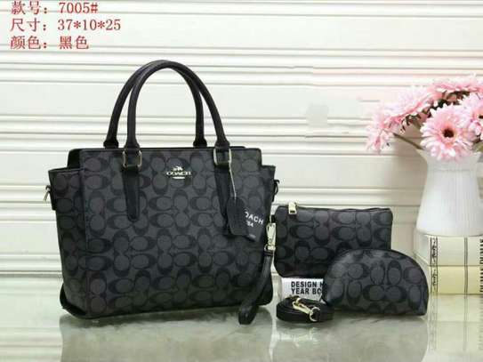 3 Pcs Set Coach Handbag