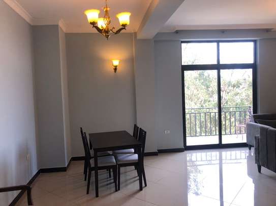 Two Bed Room furnished in an Apartment image 12