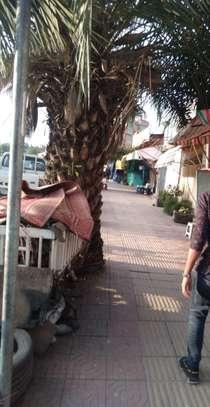 72 m2 Commercial Shop for Rent at Mekanisa image 4