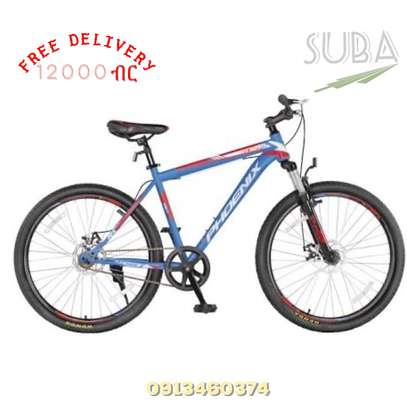 PHOENIX BICYCLE ALUMINUM PRO