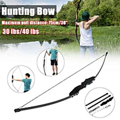 American Archery Bow Shooting Hunting image 1