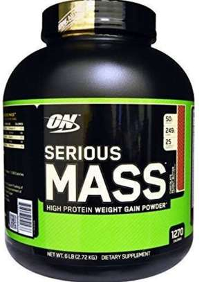 Serious mass protein powder