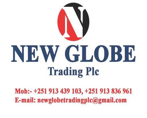 New Globe Trading plc image 1