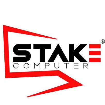 STAKE COMPUTER ™️ image 1