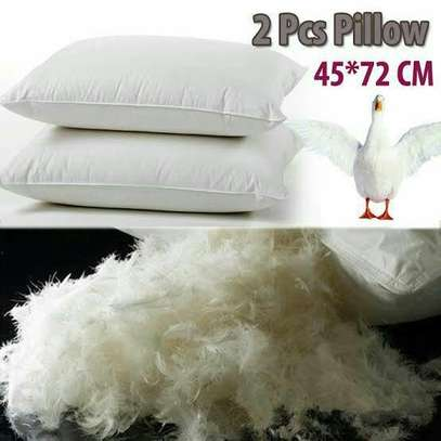 Velvet Feather Pillow image 1