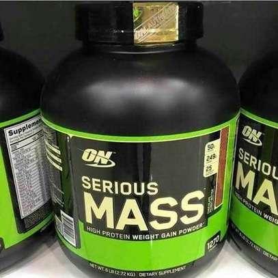 Serious Mass ® ( 2.72 KG )