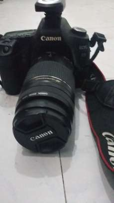 CANON 5D MARK II with 75*300 lenes image 2