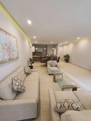 2 Bedroom Luxury Apartment For Sale(Sacuur Real Estate ) image 8