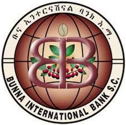 Buna International Bank Shares image 1