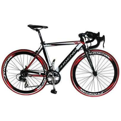 Brand New Phoenix Racing Bike