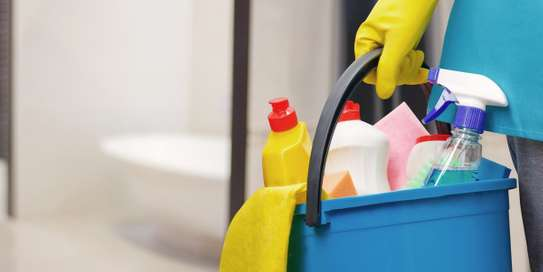 Cleaning Service image 1