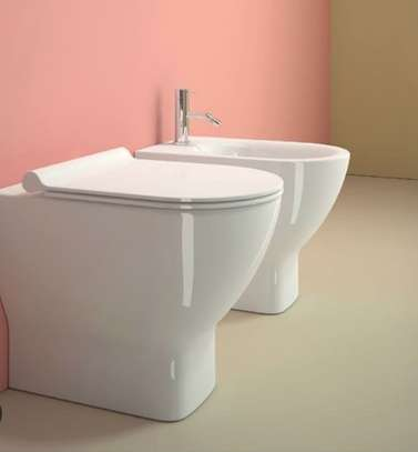New Design Toilet Seat